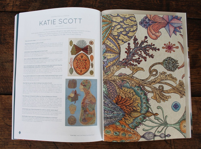 The Scientific and Anatomical Illustrations of Katie Scott: Screen shot 2014-04-08 at 9.22.54 AM.png