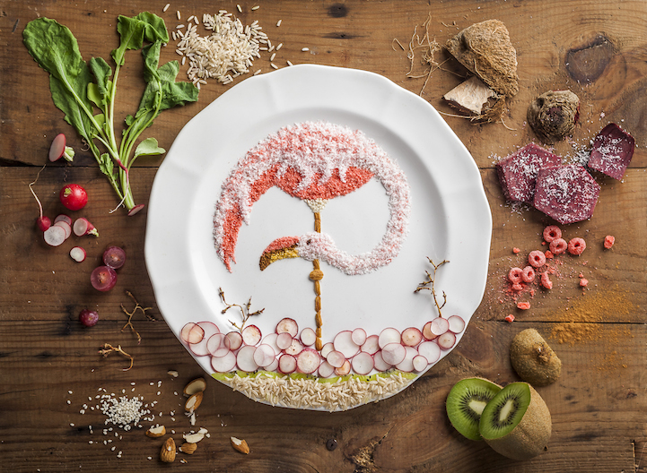 Food Illustrations by Anna Keville Joyce: AKJFoodstyling_HQFStudio_Flamingo_2013med.jpg
