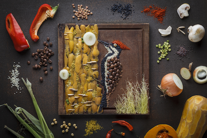 Food Illustrations by Anna Keville Joyce: AKJFoodstyling_HQFStudio_Woodpecker_2014med.jpg
