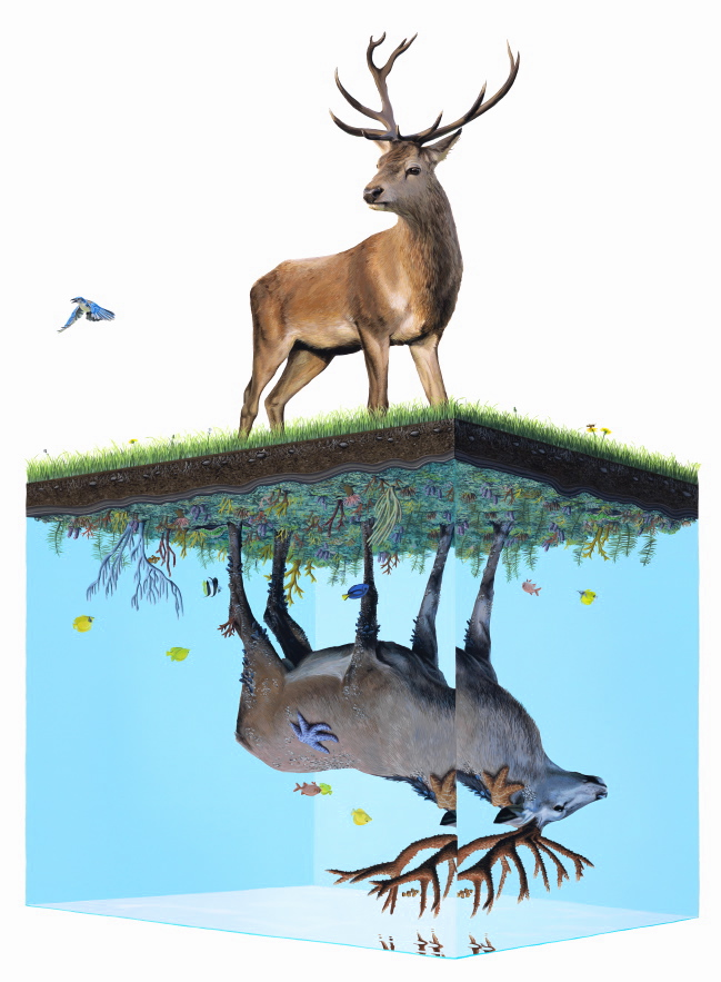Happy Earth Day: New Paintings from Josh Keyes: ANP Above and Below.jpg