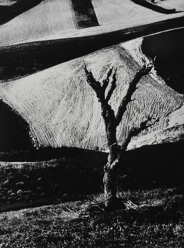 The work of Mario Giacomelli: juxtapoz-Mario-Giacomelli10.jpg