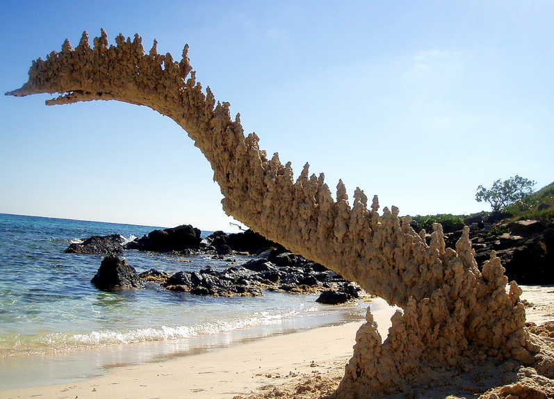 Sea Creatury Sandcastles: Screen Shot 2014-05-06 at 2.11.59 PM.png