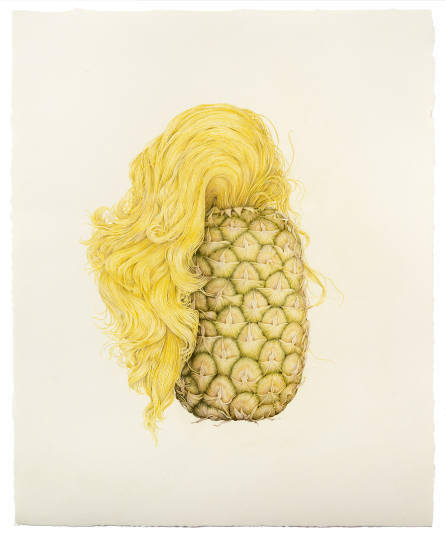 "Aurel Schmidt's ""Fruits"" and Other Drawings: JuxtapozAurelSchmidt002.jpg"