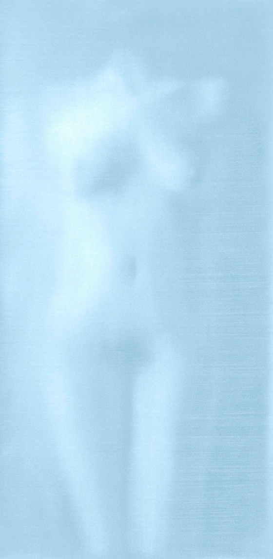 The Blurred Nudes of Alison Van Pelt: 1000w-1.jpg