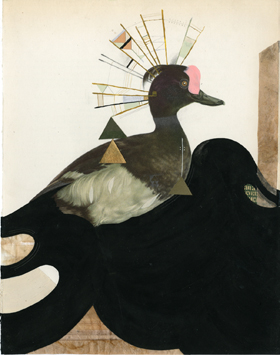 "MONICA CANILAO ""Born From Ruins"" @ Subliminal Projects, Los Angeles: The-Scaup-Duck-VAS.jpg"
