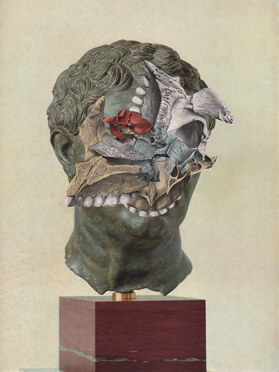 Bizarre Collages by David Delruelle: david-delruelle_04.jpg