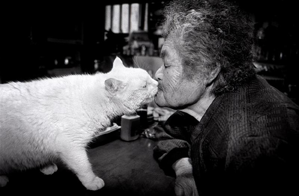 Miyoko Ihara: Misao the Big Mama and Fukumaru the Cat: jux-miyoko-ihara-10.jpg