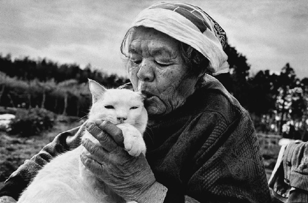 Miyoko Ihara: Misao the Big Mama and Fukumaru the Cat: jux-miyoko-ihara-2.jpg
