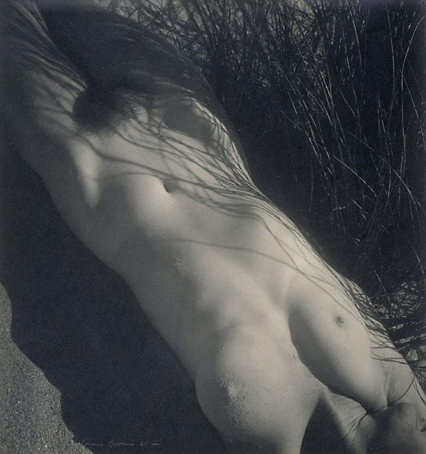 The work of Max Dupain: jux-max_dupain-10.jpg