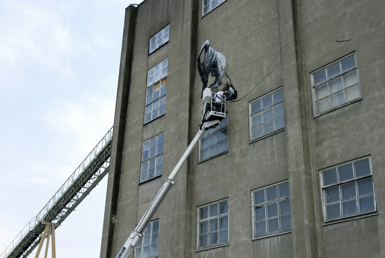 Roa Paints A Massive T-Rex in Sweden: JuxtapozROA000.jpg