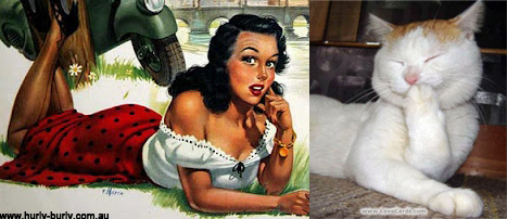 Cats That Look Like Pinup Girls: Juxtapoz-CatsPinUp003.jpg