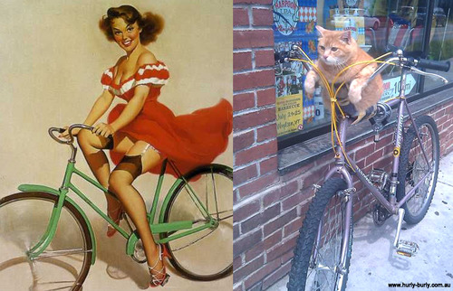 Cats That Look Like Pinup Girls: Juxtapoz-CatsPinUp004.jpg