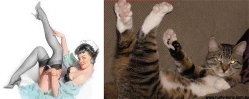 Cats That Look Like Pinup Girls: Juxtapoz-CatsPinUp005.jpg