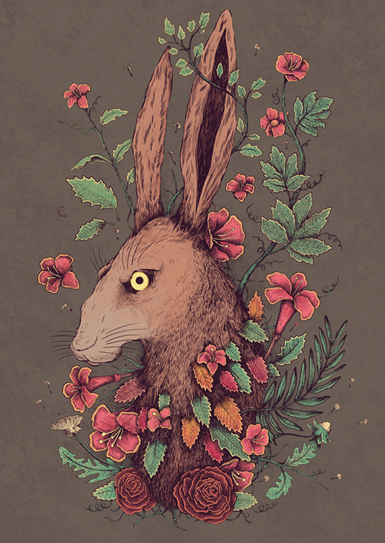 Sam Dunn Illustration: hare.jpg