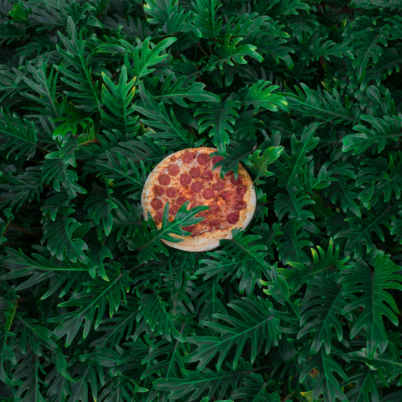 Jonpaul Douglass: Pizza in the Wild: jonpaul-douglass_01.jpg