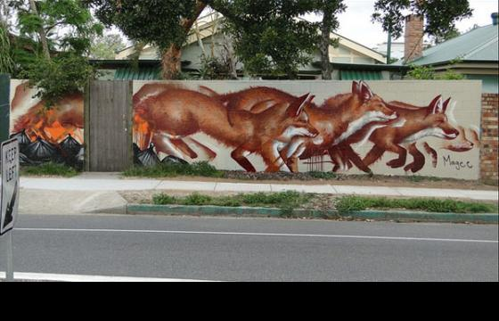 Pack of Wolves by Fintan Magee
