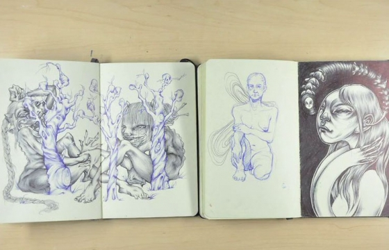Video: Moleskine Sketchbooks '09-'13 by Lauren YS