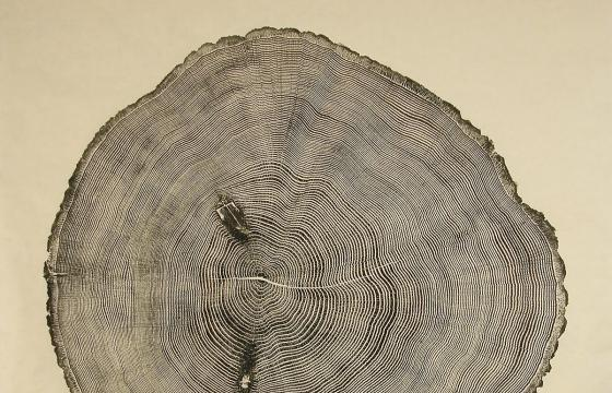 Woodcut Imprints by Bryan Nash Gill