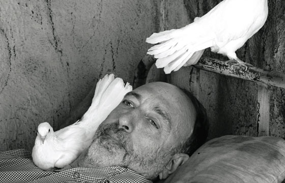 Best of 2014: Roger Ballen, Asylum of the Birds