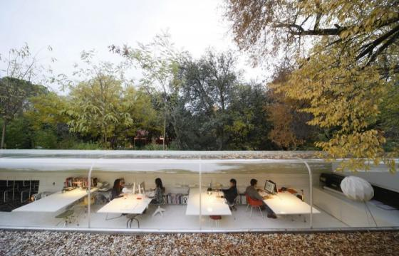 Working Under the Trees at SelgasCano Arquitectos