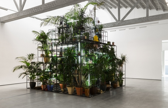 "Rashid Johnson ""Islands"" @ David Kordanksy, LA"
