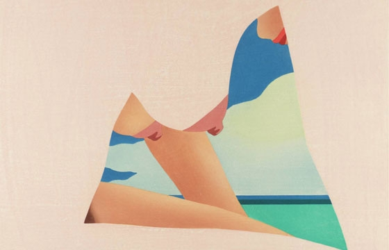 Tom Wesselmann's Pop Art Nudes