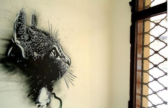 New C215 Stencils in Italy