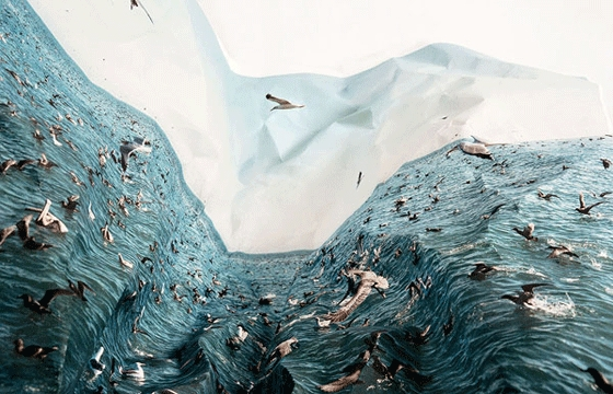 Laura Plageman's Manipulated Landscapes