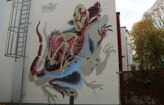 """Anatomy of a Snakebait /Rat "" by Nychos"