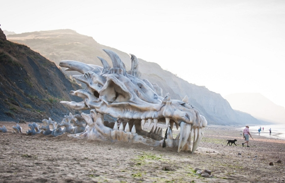 Dragon Skull Appears on Beach on England's Jurassic Coast (video)