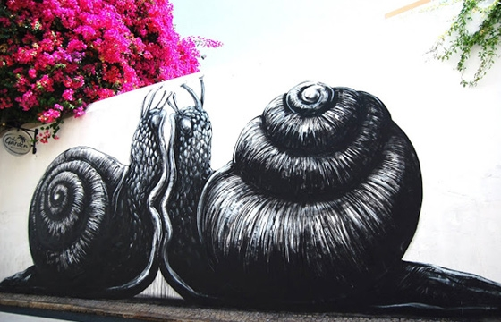 Snails mating in Portugal by Roa