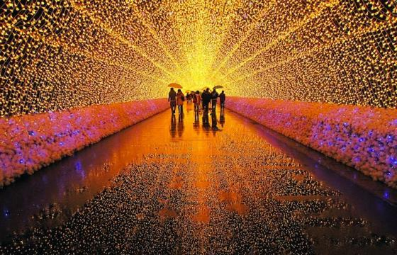 Winter Illuminations: Light Festival in Japan