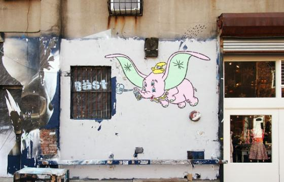 Bast: 4-Eyed Dumbo in Brooklyn