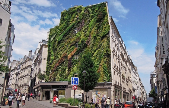 The Oasis of Aboukir, a Vertical Garden in Paris