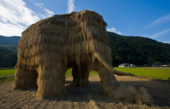 Straw Mammoth in Shadoshima, Japan