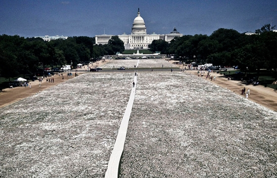 One Million handmade Bones in the National Mall in Washington D.C.