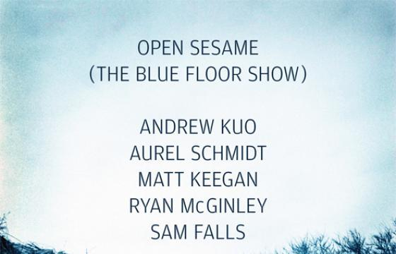 Open Sesame (The Blue Floor Show) Curated by Tim Barber at Asia Song Society