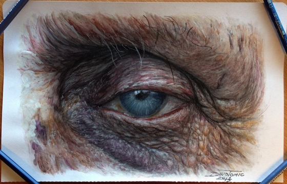 Hyperreal Eye Studies by Dino Tomic