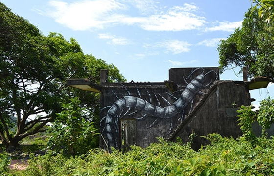 Video: Roa in Cambodia