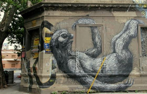 New Roa in Buenos Aires, Argentina