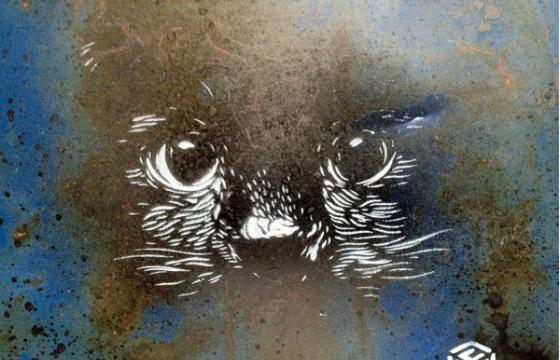 """I can see you"" cat stencil by C215"