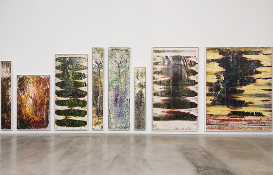 """MATTHEW BRANDT: PICTURES FROM WAI'ANAE"" @ M + B, Los Angeles"