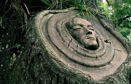Living Tree Spirit Carvings by Keith Jennings