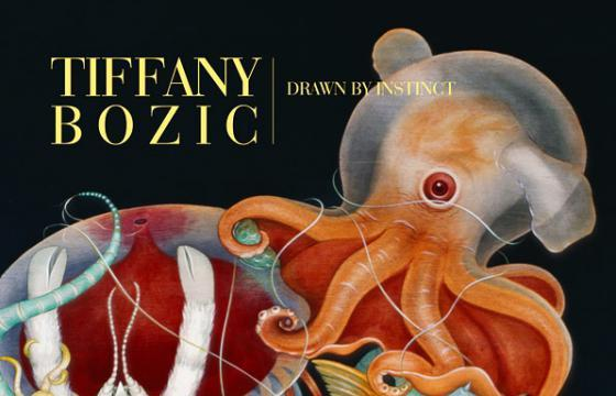 "New Book: Tiffany Bozic ""Drawn by Instinct"""