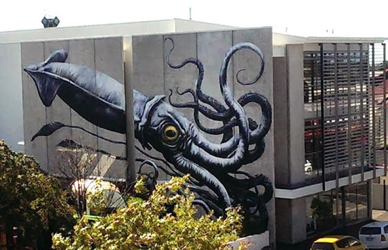Angry giant squid by Roa in Nelson, New Zealand.