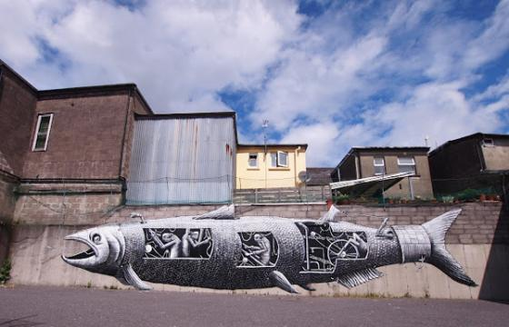 Phlegm In Bantry, Ireland