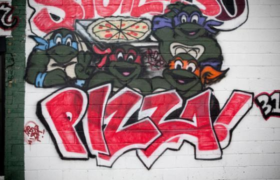TMNT Pizza Party!