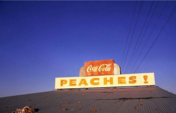 At War with the Obvious: Photographs by William Eggleston @ The MET, NYC
