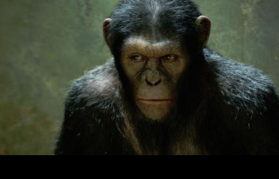 """Rise of the Planet of the Apes"" Trailer"