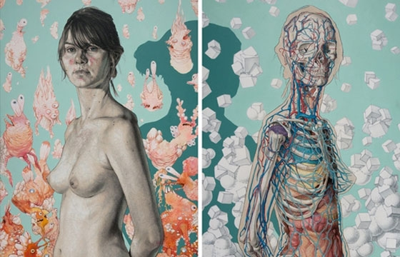 Michael Reedy's Anatomical Illustrations